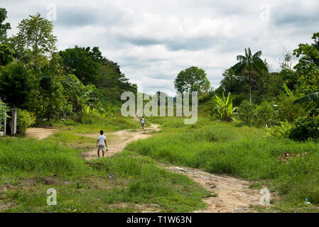 Brazil: Tabatinga. 2015/08/12. Child walking on the dirt road near the forest bordering the municipality of 45.293 inhabitants situated along the Soli - Stock Photo