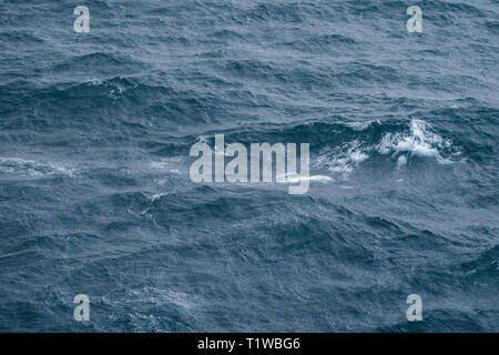 Sea surface with waves and tide aerial view background - Stock Photo