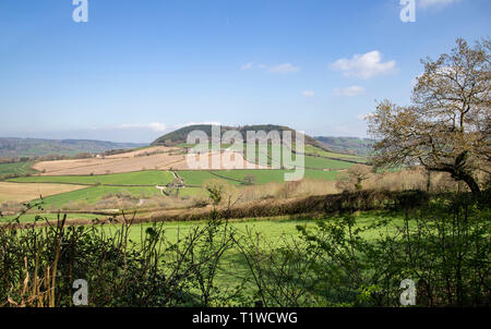 View looking across the Sid Valley, near Sidmouth, Devon, looking from Trow Hill to Buckton Hill. - Stock Photo