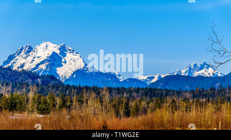 Mount Robie Reid on the left and Mount Judge Howay on the right, viewed from Sylvester Road over the Blueberry Fields near Missionin B.C., Canada - Stock Photo