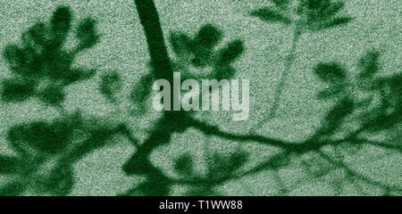 Abstract shadow of tree on artificial grass in public park - Stock Photo