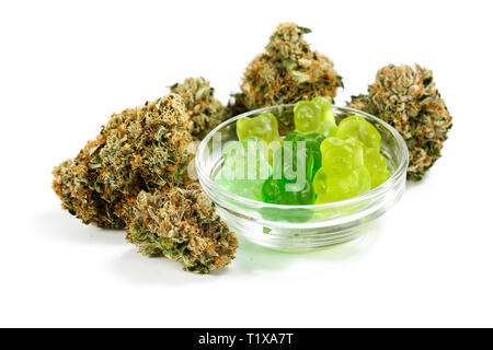 clear bowl filled with gummy bears and marijuana buds around isolated on a white background - Stock Photo