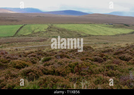 County Mayo landscape in the west of Ireland with a boardwalk visible in the Ballycroy National Park and the Nephin Beg mountains in the distance. - Stock Photo
