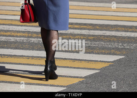 Woman walking on pedestrian crossing, rear view. Female legs in fashionable stockings and black shoes on high heels on the crosswalk, street safety - Stock Photo
