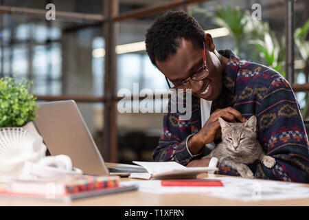 Cute grey cat distracting employees from work