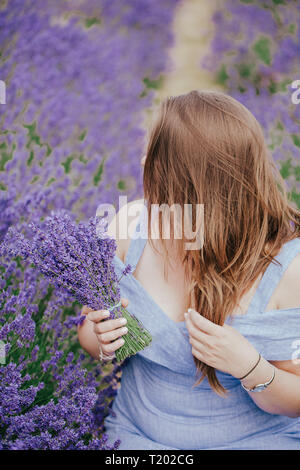 Plus size curvy woman with long hair the field of lavender in Surrey, England, Mayfield . Fashion outfit blue dress, hold bouquet flowers . Side view. - Stock Photo