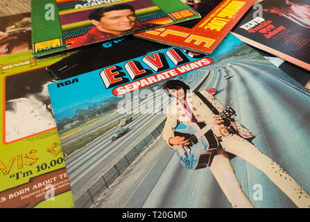 A collection of Elvis Presley music albums, records., lp's spread out. - Stock Photo