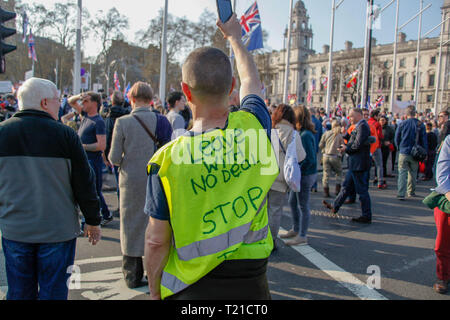 London, UK. 29th Mar 2019. Protester at the Brexit Day Protest Credit: Alex Cavendish/Alamy Live News - Stock Photo
