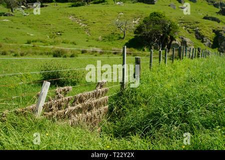 New Zealand, wicker fence with straw - Stock Photo