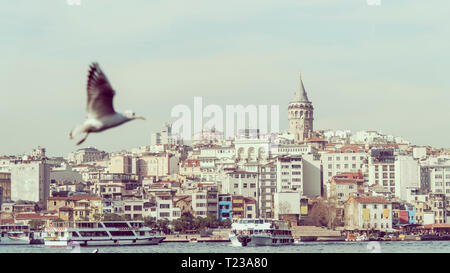 View of Istanbul with Galata Tower at skyline from Eminonu. Seagull flying over golden horn in the foreground. - Stock Photo