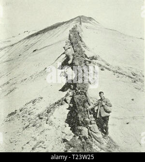 Archive image from page 278 of Discovery - Stock Photo