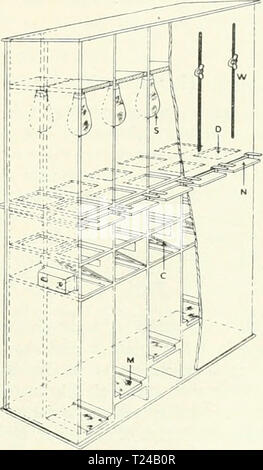 Archive image from page 482 of Discovery Stock Photo
