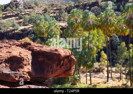 Dramatic landscape of Palm Valley, Northern Territory, Australia - Stock Photo