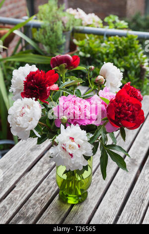 Bunch of white, red and pink Peonies in vase on garden table