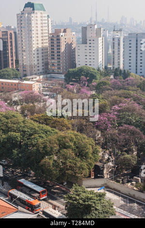 Elevated view from rooftop of downtown Sao Paulo shows cityscape of skyscrapers and trees on July 5, 2018 in Sao Paulo, Brazil. - Stock Photo
