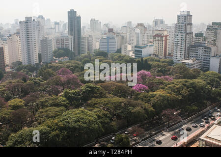 Elevated view from rooftop shows downtown Sao Paulo cityscape of skyscrapers and trees on July 5, 2018 in Sao Paulo, Brazil. - Stock Photo
