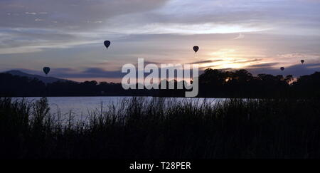 Hot air balloons flying in the air above Lake Burley Griffin, as part of the Balloon Spectacular Festival in Canberra. - Stock Photo