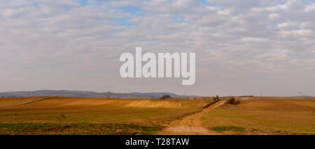 Rural scenery in Moldavia, Romania, along the national road E85 between Bacau and Adjud cities. Hills covered in golden light - Stock Photo
