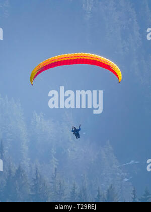 paraglider flying over swiss alps in marbach, switzerland - Stock Photo