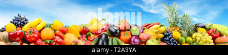 Panorama vegetables and fruits against bright blue sky. Copy space - Stock Photo