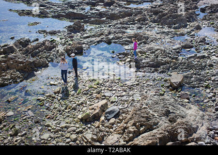 Birds eye view of three kids walking along rock pools - Stock Photo
