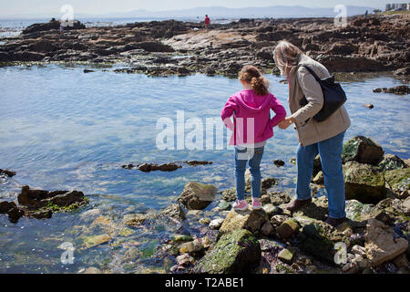 Grandmother with her grandchildren by the rock pools - Stock Photo