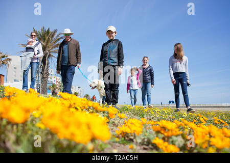 A family and their dog walking along the promenade, Sea Point, Cape Town. - Stock Photo
