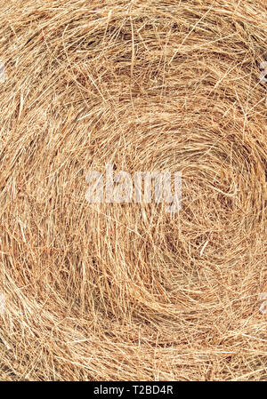 Bail of hay close-up. Straw texture. Dry grass background. - Stock Photo