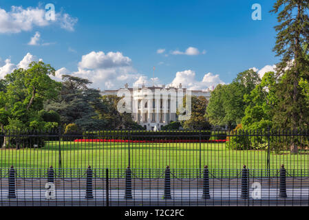 The White House in Washington DC with beautiful blue sky at summer sunny day. - Stock Photo