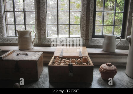 A fantastic composition with a wooden  treasure chest with eggs. Still life food photography. - Stock Photo