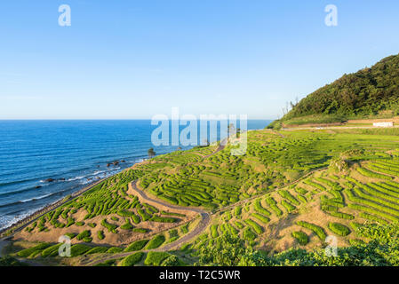 Senmaida Rice paddy terrace Wajima Ishikawa Japan - Stock Photo