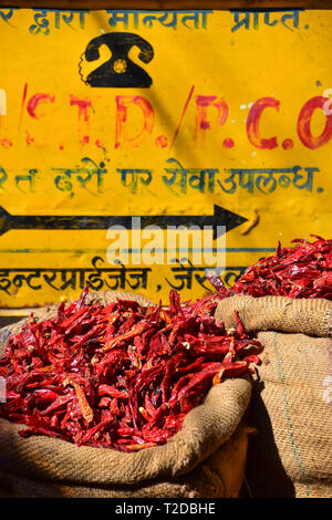 Dried Red Chillies in sacks, Jaisalmer Fort, Jaisalmer, Rajasthan, India - Stock Photo