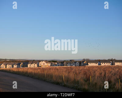 New Homes at the Stewart Milne Estate at Monarch's Rise in Arbroath, Angus, Scotland. - Stock Photo