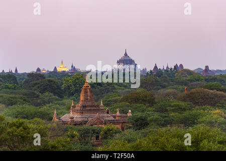 Stunning view of the beautiful Bagan Archaeological Zone with the Thatbyinnyu Temple and the illuminated Golden Palace in the background during sunset - Stock Photo