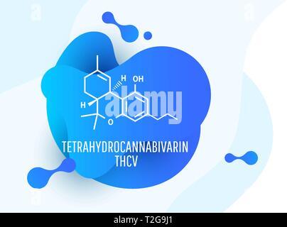 Tetrahydrocannabivarin Chemical formulas of natural cannabinoids. - Stock Photo