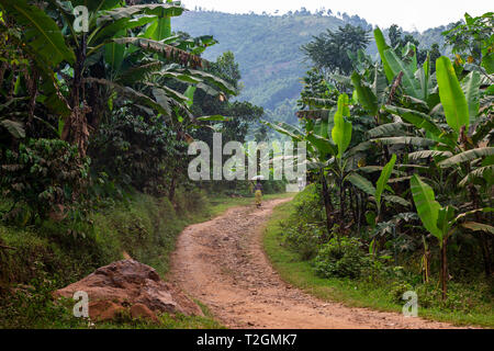 Buhoma village near Bwindi Impenetrable Forest National Park in South West Uganda, East Africa - Stock Photo