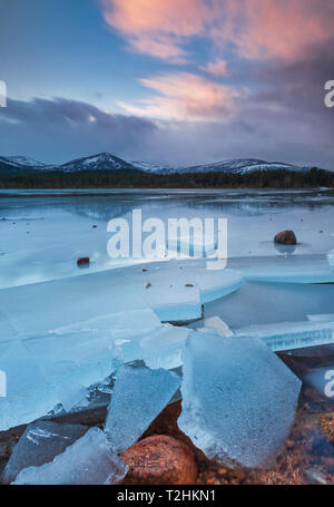 Ice sheets in severe winter weather on Loch Morlich, at daybreak, in the Badenoch and Strathspey area of Highland, Scotland, United Kingdom - Stock Photo