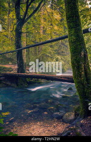 Small river flowing through the forest in Romania with a wooden bridge crossing it used by hikers - Stock Photo