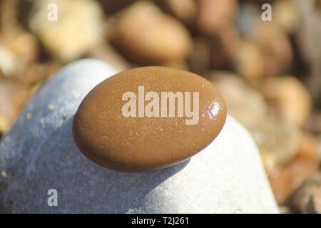 Close-up of wet pebble on a rock at a sunny, stoney beach - Stock Photo