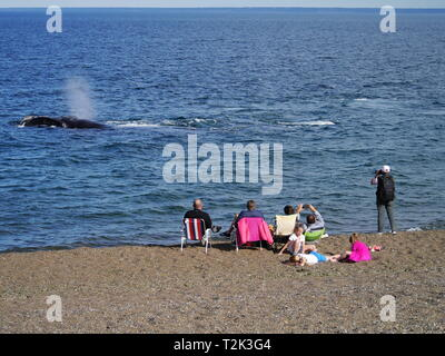 PUERTO MADRYN, AR - CIRCA OCT,2018 - Tourists spend a sunny spring afternoon watching whales near the coast of Playa Las Canteras. - Stock Photo