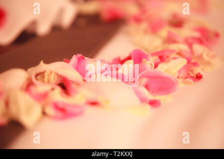 Romantic Hotel Bedroom Interior Decoration, Fresh Pink and White Rose Flower Petals sprinkled on bed for newlywed couple. Wedding, Anniversary, Honeym - Stock Photo
