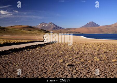 View on track along deep blue lake at Altiplanic Laguna (Lagoon) Miscanti in Atacama desert with partly snow capped cones of volcano Meniques - Chile - Stock Photo
