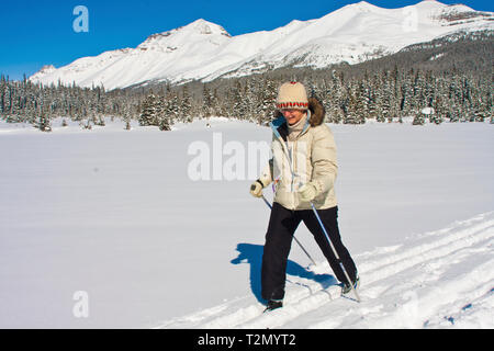 Cross Country Skiing on Bow Lake Icefields Parkway, Alberta - Stock Photo