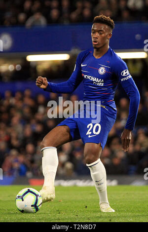 London, UK. 03rd Apr, 2019. Callum Hudson-Odoi of Chelsea in action. Premier League match, Chelsea v Brighton & Hove Albion at Stamford Bridge in London on Wednesday 3rd April 2019. this image may only be used for Editorial purposes. Editorial use only, license required for commercial use. No use in betting, games or a single club/league/player publications. pic by Steffan Bowen/ Credit: Andrew Orchard sports photography/Alamy Live News - Stock Photo