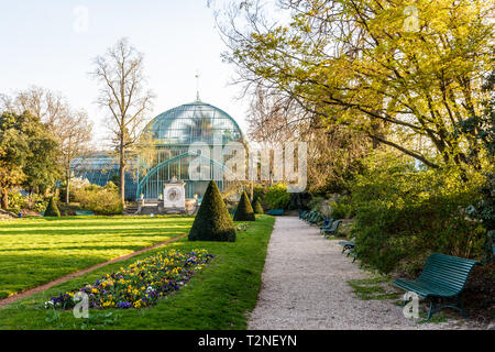 The palmarium, the large palm greenhouse in the Jardin des serres d'Auteuil, a botanical garden in Paris, France, on a sunny spring afternoon. - Stock Photo