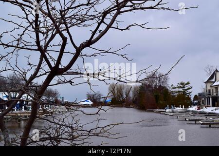 View Of Empty Harbour in the winter. Calm Water With Branches Of A Tree In The Foreground. - Stock Photo