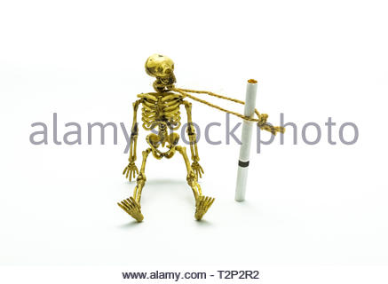 Skeleton hanged by a cigarette. Concept of addiction, cancer, death, substance abuse and medical problems. Smoking kills message. - Stock Photo