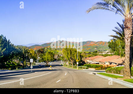 Driving towards Walker Canyon, Lake Elsinore, during the superbloom; hills covered in California poppies visible in the background; south California - Stock Photo