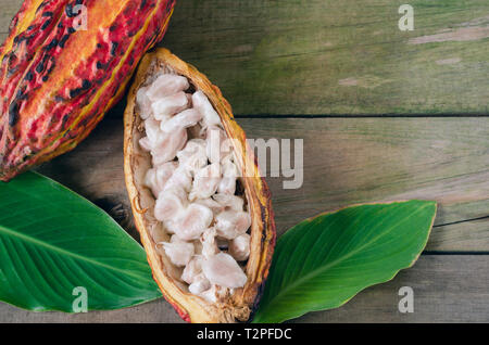 Open cocoa cob on wooden background. Space to copy. Top view.
