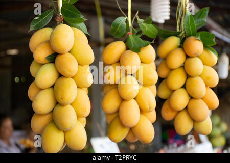 Marian plum or gandaria or plum mango on stall for sell at local shop in Nakhon Nayok, Thailand - Stock Photo